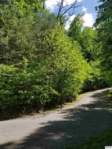 Lot 31 Riversong Way, Sevierville, TN 37876 (#222249) :: The Terrell Team