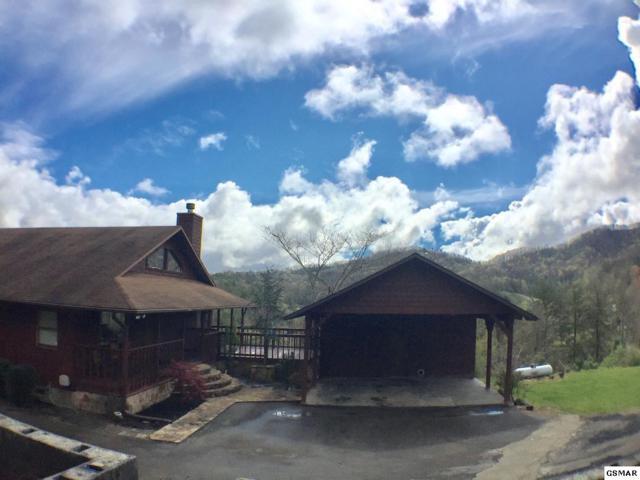 1463 Red Cedar Ln, Sevierville, TN 37876 (#222258) :: Prime Mountain Properties