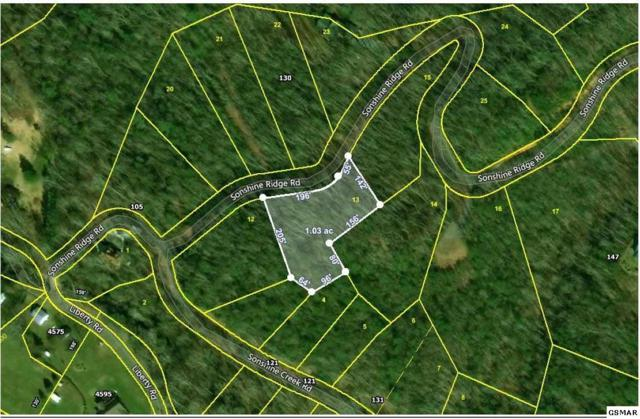 Sonshine Ridge Rd. Lot 13, Cosby, TN 37722 (#222273) :: Prime Mountain Properties