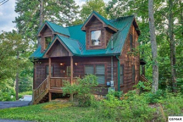 """1517 Ginnys Trail """"Ivy Lodge"""", Sevierville, TN 37876 (#222274) :: The Terrell Team"""