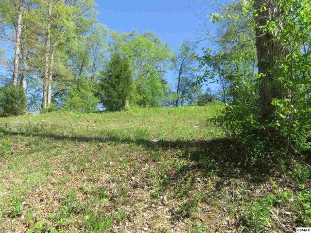 Lot Lot 12 Infinity Lane, Sevierville, TN 37876 (#222278) :: Colonial Real Estate