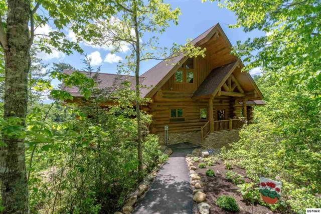 "618 Big Bear Ridge Way ""Taygan's Place, Gatlinburg, TN 37738 (#222304) :: The Terrell Team"