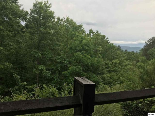 1081 Cove Rd Unit#1011, Sevierville, TN 37876 (#222320) :: Billy Houston Group