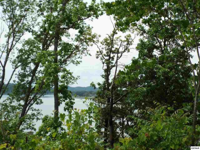 Lot 63 Stone Bridge Drive, Dandridge, TN 37725 (#222322) :: Four Seasons Realty, Inc