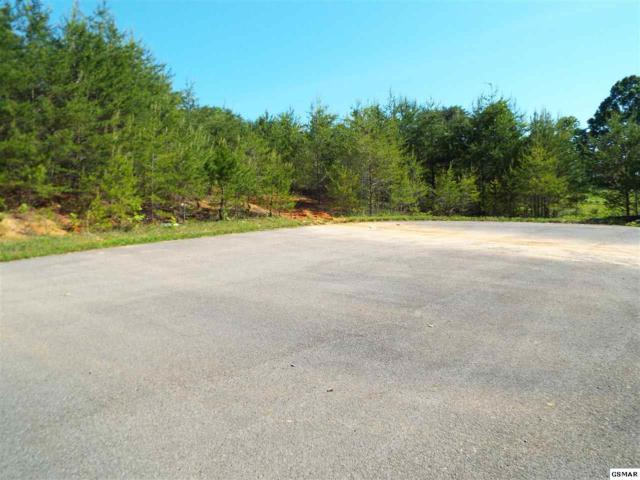 Lot 14 Magaha Chapel Road, Cosby, TN 37722 (#222323) :: The Terrell Team