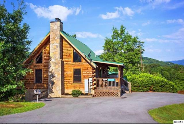 532 Chickasaw Gap Way Bear Ridge, Pigeon Forge, TN 37863 (#222377) :: The Terrell Team