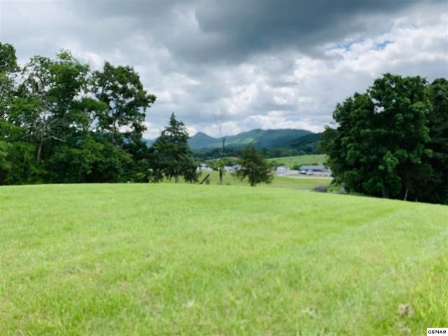 Lot 8 Amanda View Way, Sevierville, TN 37876 (#222386) :: The Terrell Team
