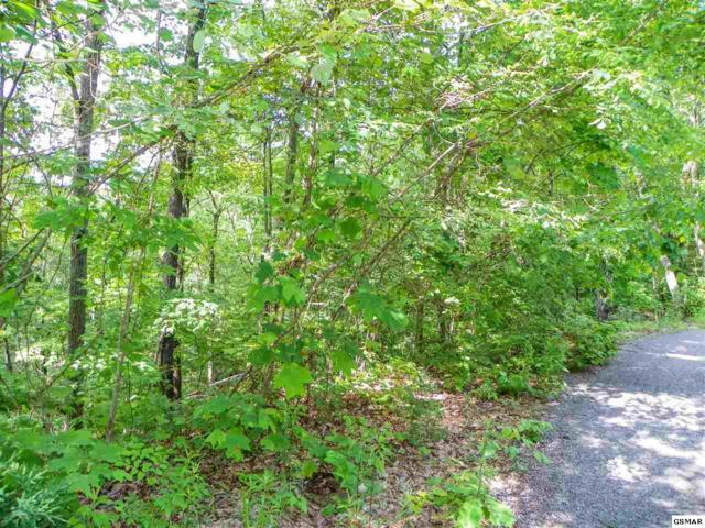 Lot# 65 Dollys Drive, Sevierville, TN 37876 (#222389) :: Four Seasons Realty, Inc