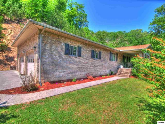 454 Wildcat Hollow Rd, New Tazewell, TN 37825 (#222406) :: Colonial Real Estate