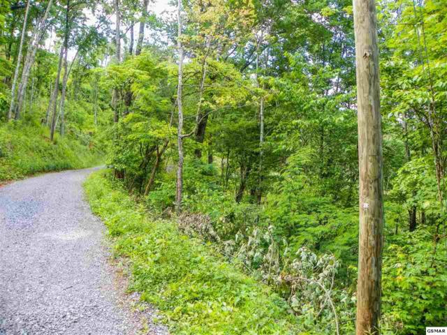 Lot# 32 Sourwood Way, Sevierville, TN 37862 (#222409) :: The Terrell Team