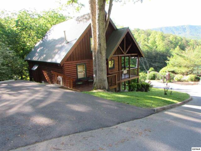 "4408 Forest Vista Way ""Bear Climbing , Pigeon Forge, TN 37863 (#222420) :: The Terrell Team"