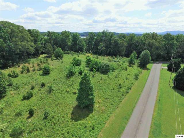 Woods Ridge Rd, Dandridge, TN 37725 (#222421) :: Colonial Real Estate