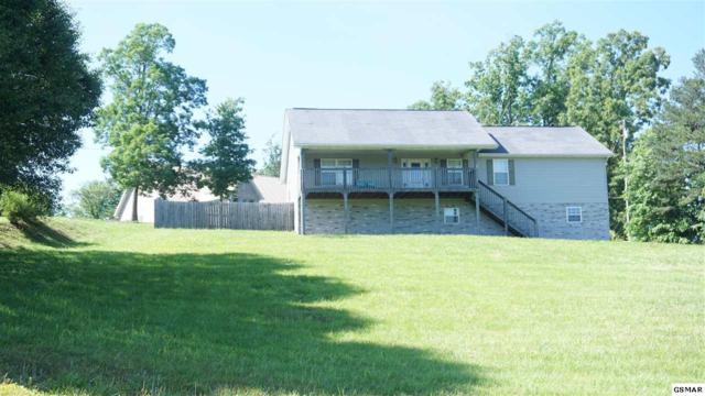 1304 Deer Meadows Road, Sevierville, TN 37862 (#222462) :: The Terrell Team