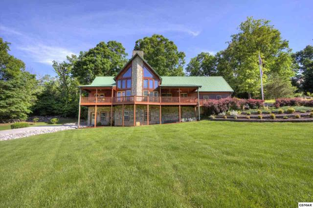 3202 Valley Home Rd, Sevierville, TN 37862 (#222496) :: The Terrell Team