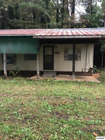 2744 Cedar Bluff Rd, Sevierville, TN 37876 (#222498) :: The Terrell Team