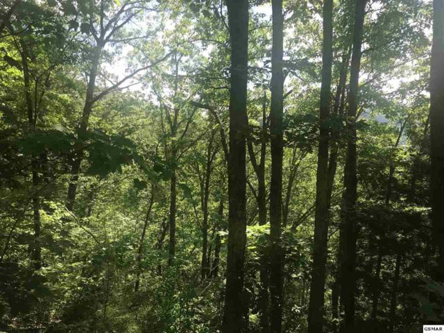 Lot 0001 Emerald Springs Loop, Sevierville, TN 37876 (#222505) :: The Terrell Team