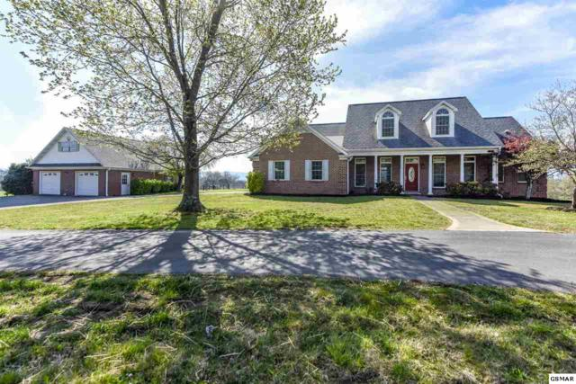 3632 Wildwood Rd, Maryville, TN 37804 (#222510) :: Prime Mountain Properties