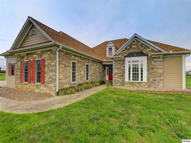 2330 Wild Pear Trail, Dandridge, TN 37725 (#222522) :: Prime Mountain Properties