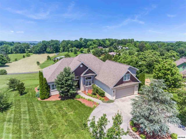 1514 Oakley Manor Court, Sevierville, TN 37862 (#222524) :: Prime Mountain Properties