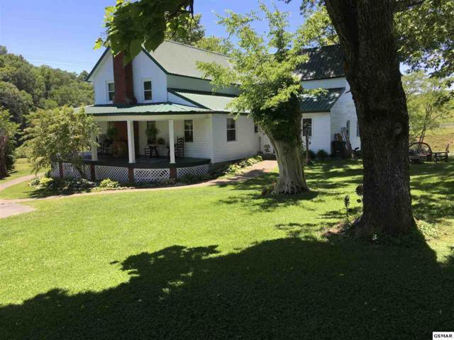 806 Gists Creek Rd, Sevierville, TN 37876 (#222527) :: The Terrell Team