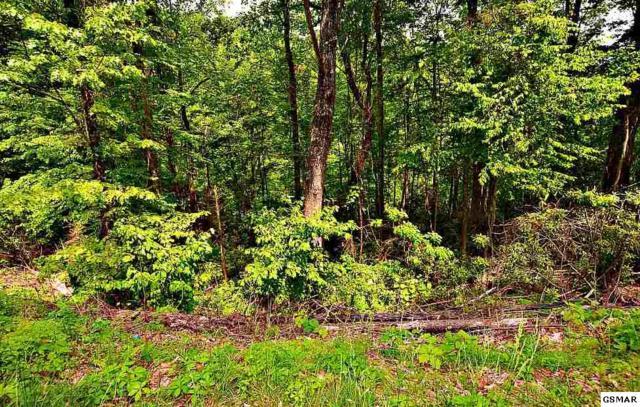 Lots 19 & 20 N Baden Drive, Gatlinburg, TN 37738 (#222551) :: Prime Mountain Properties