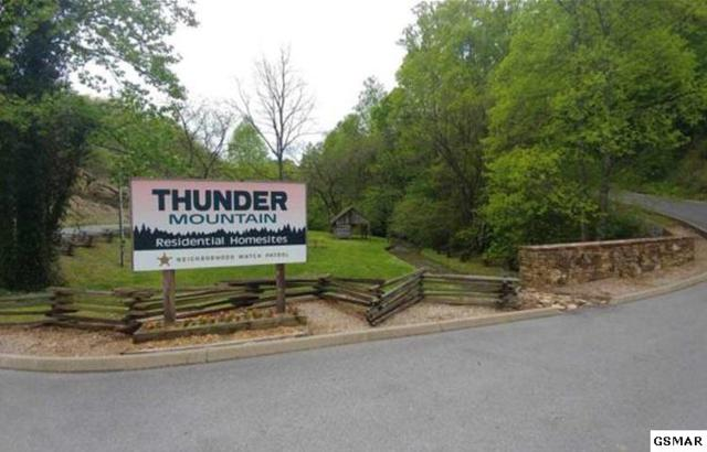 5 Thunder Mountain Dr., Sevierville, TN  (#222552) :: Four Seasons Realty, Inc