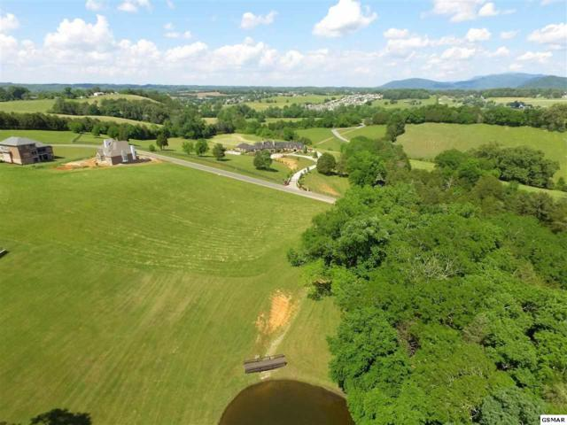 Lot 32 Tradition Lane, Sevierville, TN 37876 (#222562) :: The Terrell Team