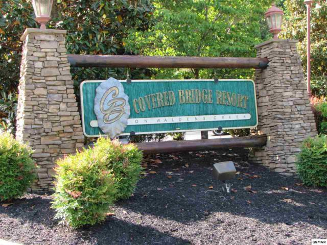 Lot 63 Bear Creek Way, Pigeon Forge, TN 37863 (#222571) :: Prime Mountain Properties