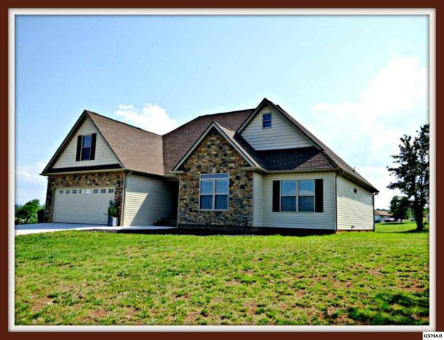 517 Mountain Vista Trail, Dandridge, TN 37725 (#222586) :: Prime Mountain Properties