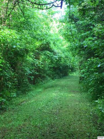 +-7.76 Acres Lower Rinehart Road, Dandridge, TN 37725 (#222593) :: Prime Mountain Properties