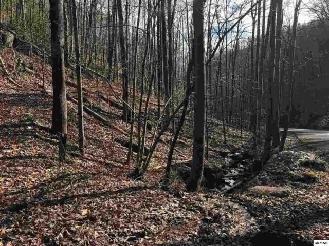 Lot Lot Lot #34 Mountain Blvd, Sevierville, TN 37876 (#222597) :: Prime Mountain Properties