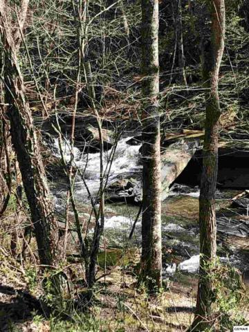Lot 6 Old Birds Creek Rd, Sevierville, TN 37876 (#222602) :: Colonial Real Estate