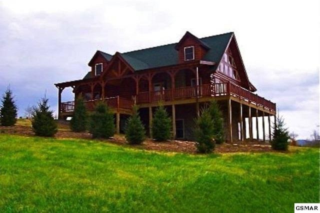 94 Alpine Mountain Way, Pigeon Forge, TN 37863 (#222604) :: Prime Mountain Properties