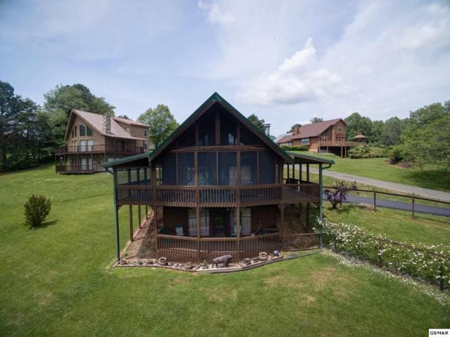 3409 Cherokee Ridge Way, Sevierville, TN 37862 (#222609) :: Colonial Real Estate