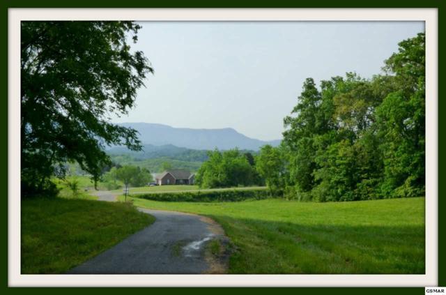 Lot 21R-1 Indian Creek Rd. Lot 21R-2, Dandridge, TN 37725 (#222616) :: Prime Mountain Properties