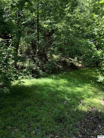 Mutton Hollow Tract 1 & 2, Kodak, TN 37764 (#222619) :: Prime Mountain Properties