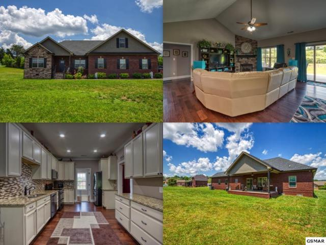 407 Winners Circle, Seymour, TN 37865 (#222620) :: Prime Mountain Properties