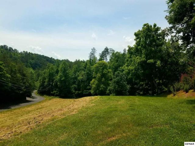Lot 38 Jobey Green Hollow Rd, Sevierville, TN 37876 (#222629) :: Colonial Real Estate