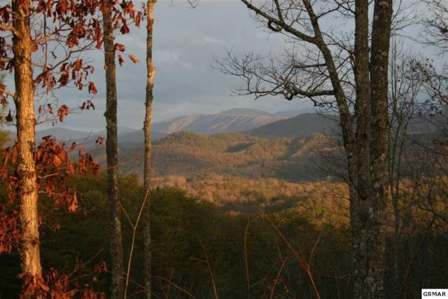 Lot #38 Tolliver Trail, Townsend, TN 37882 (#222639) :: Prime Mountain Properties