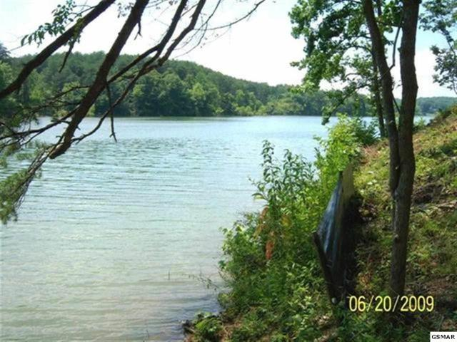 Lot 26 Sanctuary Shores Way, Sevierville, TN 37876 (#222657) :: The Terrell Team