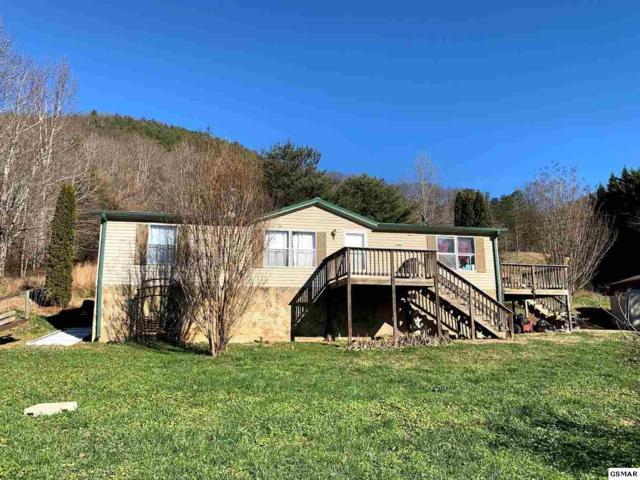 3570 Sugar Camp Cir, Sevierville, TN 37862 (#222667) :: Prime Mountain Properties