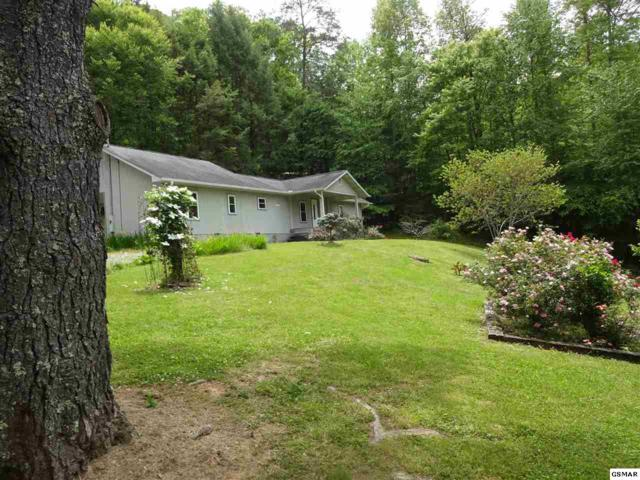 5718 Henry Town Road, Sevierville, TN 37876 (#222684) :: Prime Mountain Properties