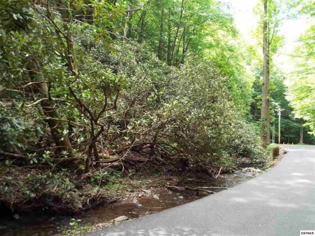Lot 20 Butler Branch, Gatlinburg, TN 37738 (#222687) :: Four Seasons Realty, Inc