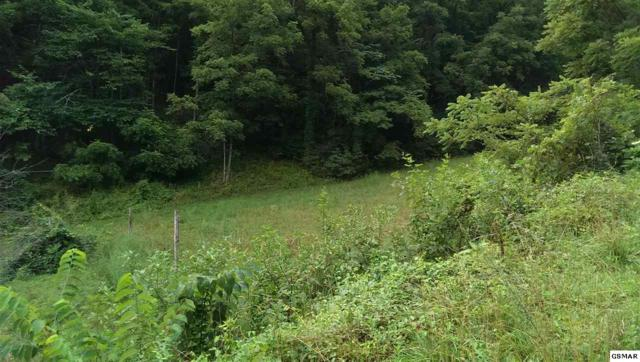 Herman Large Lane Tract #3, Sevierville, TN 37876 (#222704) :: Four Seasons Realty, Inc