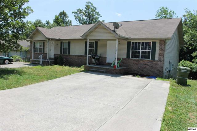 113 Gray Squirrel Ln, Seymour, TN 37865 (#222705) :: Prime Mountain Properties