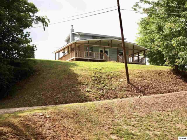 815 Hartsell Rd, Newport, TN 37821 (#222708) :: Prime Mountain Properties