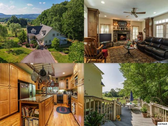 3130 Kulpan Way, Sevierville, TN 37862 (#222728) :: Prime Mountain Properties