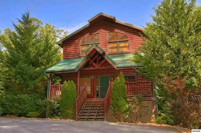 1915 Elk Springs Way Natural Attract, Gatlinburg, TN 37738 (#222729) :: The Terrell Team