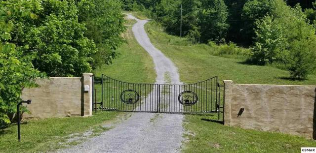 Lots 5 & 6 Lick Creek Road, Tellico Plains, TN 37385 (#222736) :: Four Seasons Realty, Inc