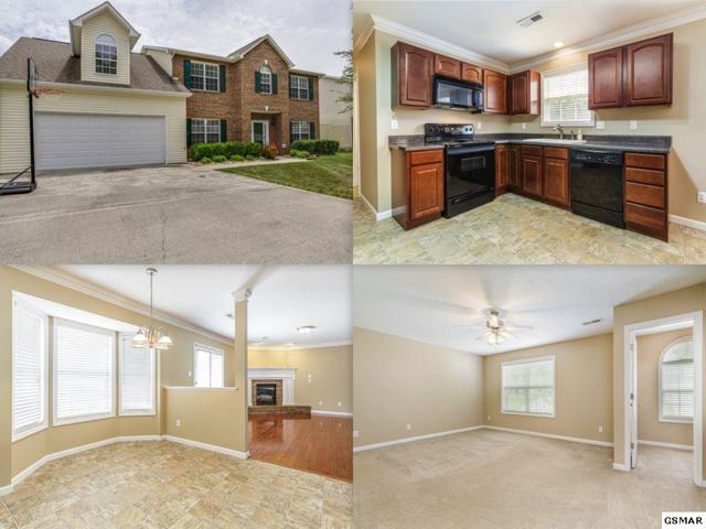 8634 Abraham Lane, Knoxville, TN 37931 (#222741) :: Colonial Real Estate